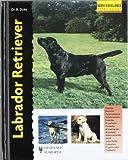 Labrador Retriever (Excellence)