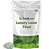 Fertilizer Lawns - Best Reviews Guide