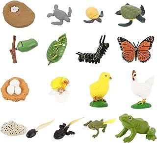 TOYMYTOY 動物フィギュア 成長サイクル セット 動物モデル 昆虫模型 リアル 教育モデル 教育ツール プレゼント 子供 ニワトリ+蛙+蝶+亀