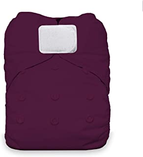 Thirsties Natural One Size All in One Cloth Diaper, Hook & Loop Closure, Sugar Plum