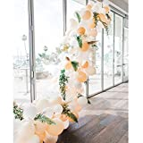 Soonlyn Blush White Latex Balloons 110 Pcs 10 Inch Peach Balloons Party Balloons for Wedding Party Bridal Shower Baby Shower
