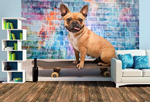 Premium Foto-Tapete Franz. Bulldogge auf Skateboard (versch. Größen) (Size L | 372 x 248 cm) Design-Tapete, Wand-Tapete, Wand-Dekoration, Photo-Tapete, Markenqualität von ERFURT