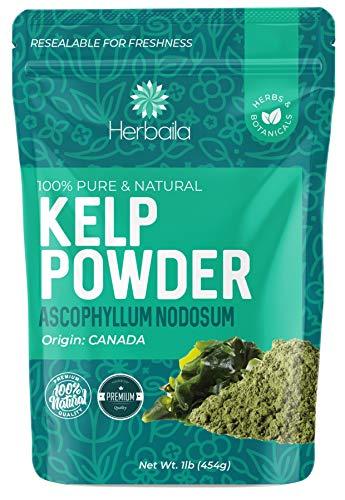 Kelp Powder 1 Lb, Natural Iodine Supplement (High Fiber) Raw Kelp Seaweed Extract from Canada, 100% Pure, non-GMO, Gluten-free & Kosher