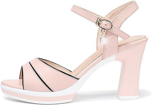 ZHIRONG Sandales d'été des femmes de de la mode des chaussures de bouche de poisson imperméable à l'eau plate avec une seule boucle romaine chaussures à talons hauts 8.5CM ( Couleur   Rose , taille   EU36 UK3.5 CN35 )  Envoi gratuit pour toutes les commandes