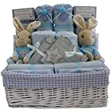Cesta de regalo para bebé, diseño de Peter Rabbit con texto en inglés'Twin Boys'