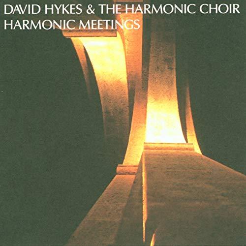Harmonic Meetings (2 Cd) - David Hykes And The Harmonic Choir