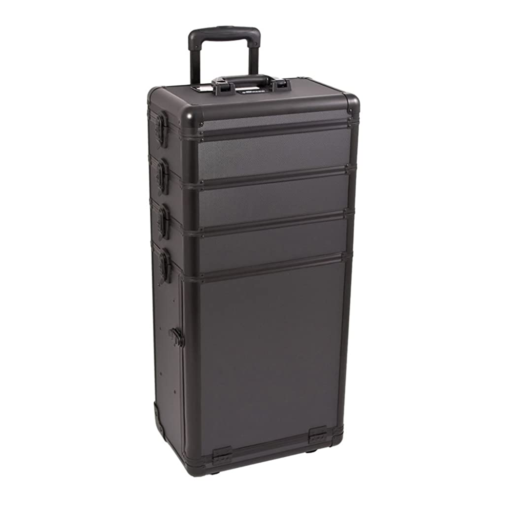 Craft Accents I3362 Dot Trolley Craft/Quilting Storage Case, Black
