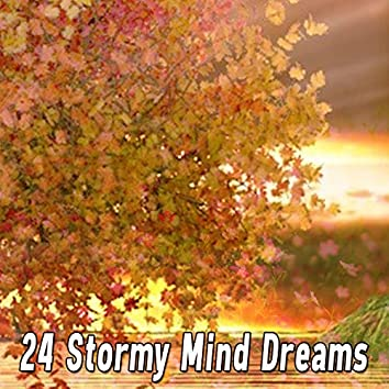 24 Stormy Mind Dreams