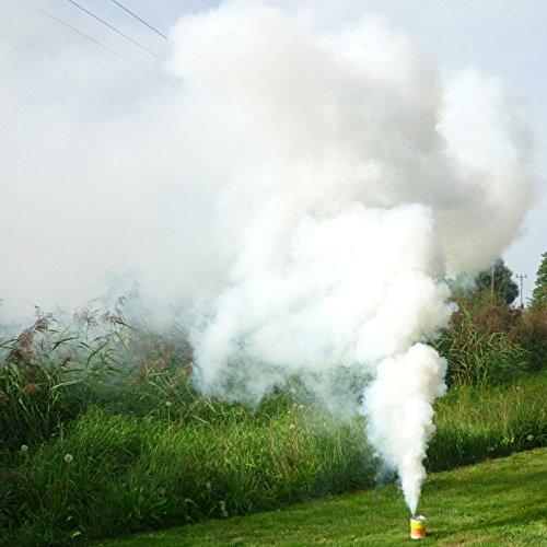 Raucherzeuger Mr. Smoke Typ 4 in Weiss