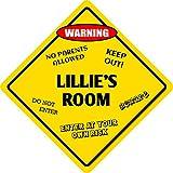 Plaque en métal – Lillie'S Room – Vintage Home Bar Yard Decor Signs Rectangle en aluminium Art mural amusant, facile à monter, 30,5 x 30,5 cm