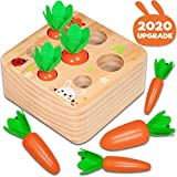 Hamsoo Montessori Toys for Toddlers Age 1-3, Carrot Harvest Shaped & Size Matching Game Fine Motor Skill Wooden Toys for 1 2 3 Year Old Boys and Girls Baby Preschool Learning Best Gift