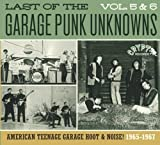 Last Of The Garage Punk Unknowns 5 & 6 / Various