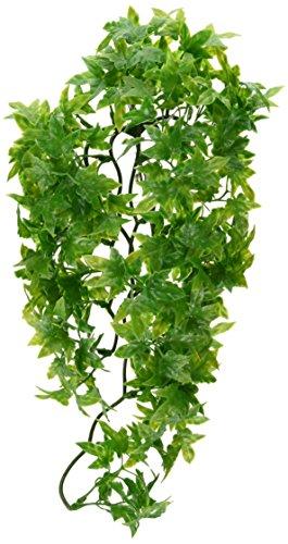 Zoomed 40006242 Natural Bush Piantine