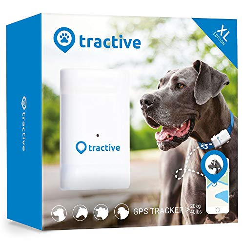 Tractive GPS Tracker XL für Hunde - Peilsender mit 6 Wochen Akku, unlimitierter Reichweite