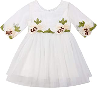 BULINGNA Toddler Kids Baby Girl Half Sleeve Embroidery Floral Tutu Dresses Zip Up Princess Fairy Dress