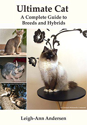 Ultimate Cat: A Complete Guide to Breeds and Hybrids (English Edition)