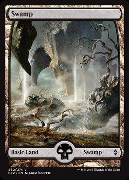 Magic: the Gathering - Swamp (262/274) - Battle for Zendikar