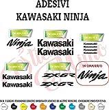 Adhesivo Mimo Kawasaki Ninja – Pegatinas de Vinilo – Elige el Color – Tamaño y cantidad de la Imagen – Compatibles – Pegatinas Autoadhesivas Autoadhesivos