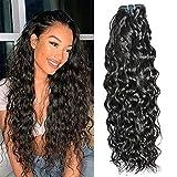 Ladiary Tissage Bresilien en lot 100% Meches Cheveux Naturel Brésilienne Water Wave Hair BundlesTissage Naturel Couleur 1 faisceaux 18 pouce tissage bresilien Water Wave Hair Bundles
