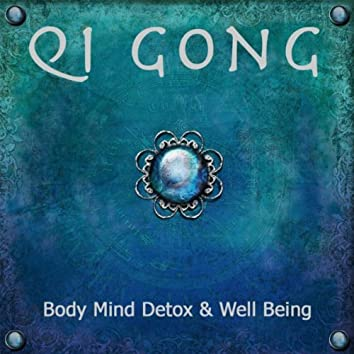 Qi Gong: New Age Soothing Music, Relaxation Meditation Music for Body Mind Detox & Well Being