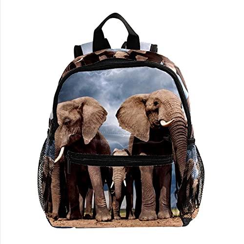 Mochilas Infantiles Elefante Animal Mochila para Niños Guarderia Niño Mochila Mochila Escolar para niños y niñas Personalizada 25.4x10x30cm