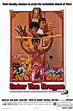 Enter the Dragon Poster Movie 11x17 Bruce Lee John Saxon Jim Kelly Ahna Capri Premium Poster Print, 11x17