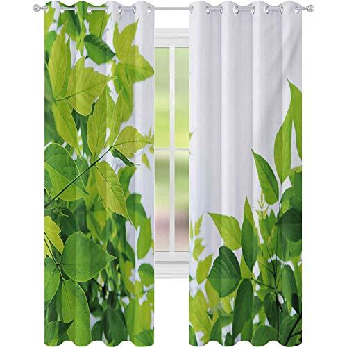 Cortinas de ventana que reducen el ruido, hermosa foto de hojas frescas temporada primavera nacimiento de la naturaleza felicidad ecología, 52 x 108 cortinas para sala de estar, dormitorio, verde