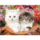 Kit de broderie au point de croix pour enfants 5D peinture diamant complet motif chat blanc et temple de chat coloré point de croix diamant décoration murale - 30 x 40 cm