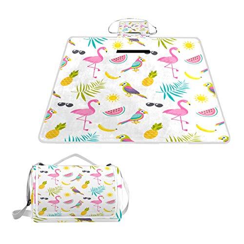 XINGAKA Couverture de Pique-Nique,Modèle avec des perroquets Flamingo Oiseaux et Fruits,Tapis Idéale pour Plage Jardin Parc Camping