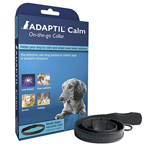 ADAPTIL Calm – Anti-stress pour chien – Collier Petits Chiens – Taille S