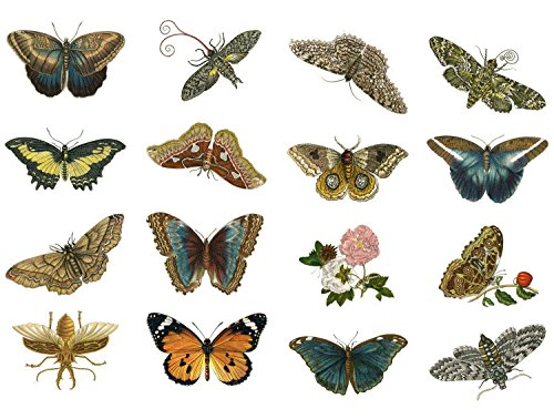 Decoupage Papier Pack (20 blatt 10x15cm) Butterfly FLONZ Vintage Retro