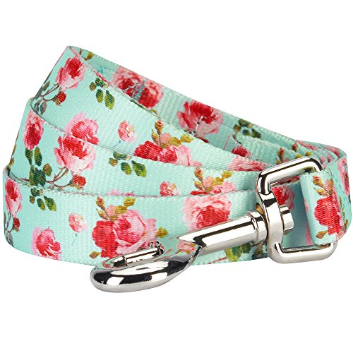 "Blueberry Pet 9 Patterns Durable Spring Scent Inspired Floral Rose Print Turquoise Dog Leash 5 ft x 5/8"", Small, Leashes for Dogs"
