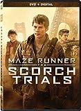 Maze Runner: The Scorch Trials [Edizione: