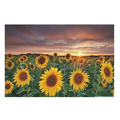 500 Pieces 3D Sunflowers Field Sunset Jigsaw Puzzles,Decompressing Gifts Puzzles -Landscape for Adults Kids Entertainment white3 300 pieces