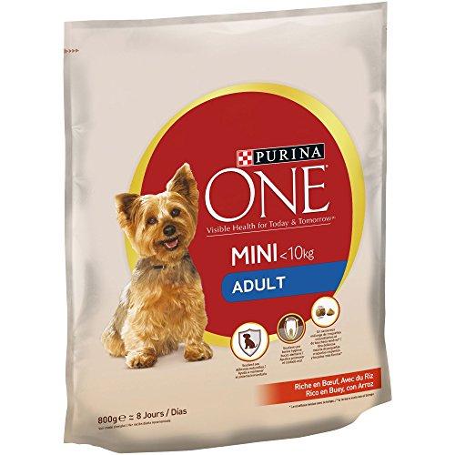 Purina ONE Mini Pienso para Perro Adulto Buey y Arroz 8 x 800 g ✅