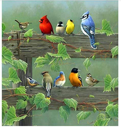 Diverse vogels op de olieverfschilderij hek 5D DIY diamant tekening ronde boor volledige boren borduurwerk kunst schilderijen ambachten mozaïek huisdecoratie cadeau 40 cm.