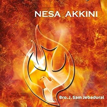Nesa Akkini
