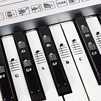 Piano and Keyboard Music Note Full Set Stickers for White and Black Keys  Transparent and Removable  Made in USA
