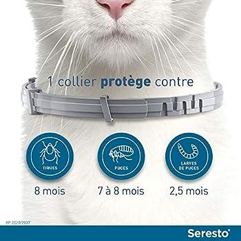 SERESTO Chat - Collier Anti-Puces et Anti-Tiques pour Chats