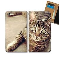 Galaxy A21 SC-42A ケース スマホケース 手帳型 ベルトなし 猫 ネコ ねこ 動物 アニマル 手帳ケース カバー バンドなし マグネット式 バンドレス EB293020114903