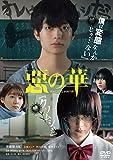 惡の華[DVD]