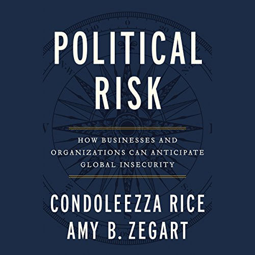 Political Risk cover art