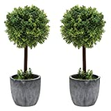MyGift Set of 2 Small Realistic Artificial Boxwood Topiary Trees/Faux Tabletop Plants w/Gray Ceramic Pots
