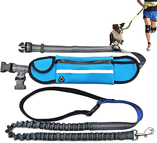 DHGTEP Correa De Manos Libres para Correr, Jogging, Senderismo con Bolsa De Cintura Impermeable, Correa Retráctil para Perros, Cinta De Cintura Ajustable, Reflectante, Doble Asa (Color : Blue)