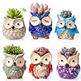 """Claywa Ceramic Owl Succulent Pots Cute Animal Plant Planters 2.75"""" to 3.35"""" with Drainage Pack of 6 Plants Not Included"""