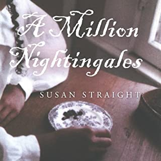 A Million Nightingales audiobook cover art