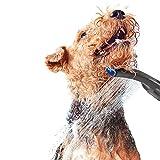 Waterpik PES-142UK Accessoire de douche pour chien pour intérieur et extérieur Gris