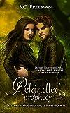 Rekindled Prophecy: Greylyn the Guardian Angel Book 1 (Kindle Edition)