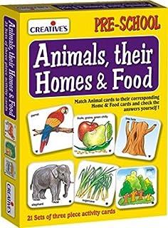 Creative Animals, Their Homes & Food