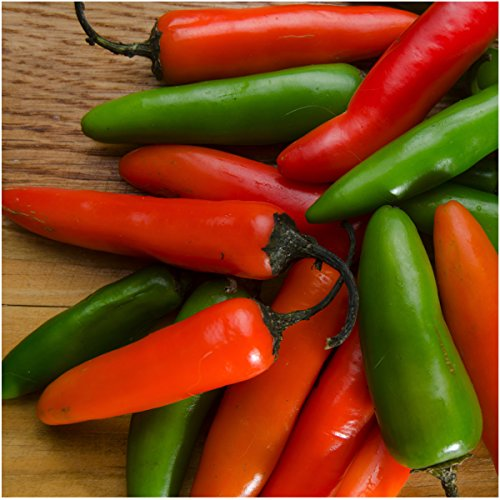 Seed Needs, Serrano Chile Pepper (Capsicum annuum) Twin Pack of 100 Seeds Each Non-GMO